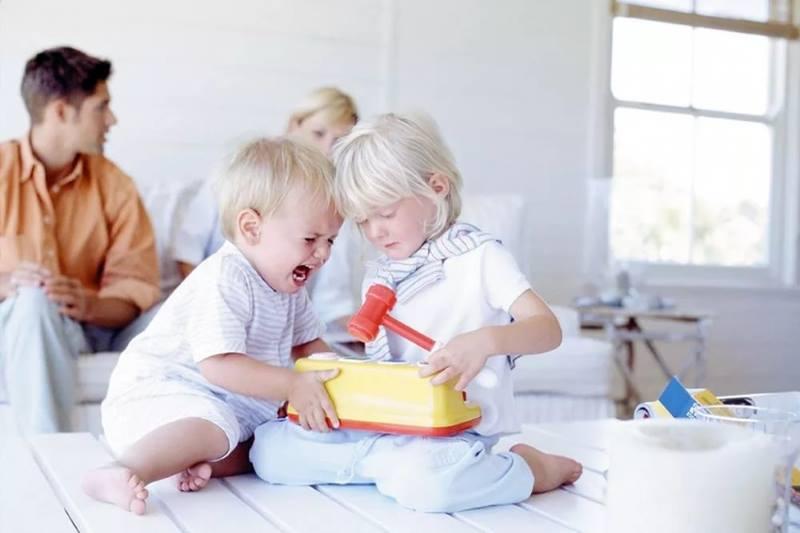 дети не поделят игрушку