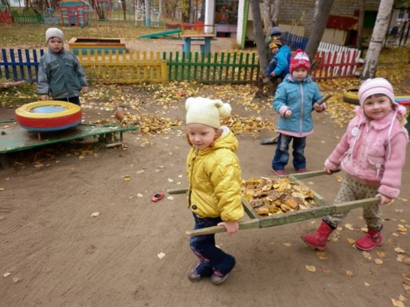 Трудовая деятельность детей